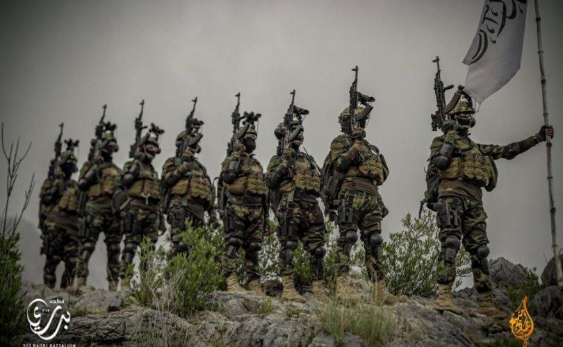 Талибуудын дайны олз 85 тэрбум ам.доллартай тэнцэв
