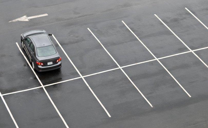 Зөвшөөрөлгүй газруудыг чөлөөлж, авто зогсоол барина