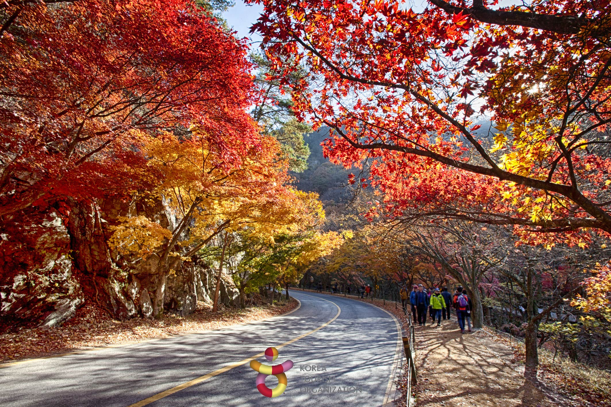 1115001201711020k_Naejangsan Mountain