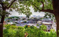Солонгос улсаар аялцгаая  (Хойд Жолла муж)