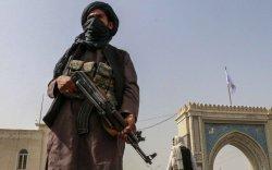 Талибууд 13 хазара хүнийг үндэслэлгүйгээр цаазалжээ