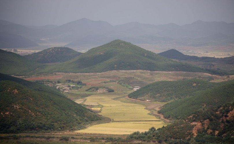 Хойд Солонгост хүнсний хомсдол ноцтой түвшинд хүрчээ