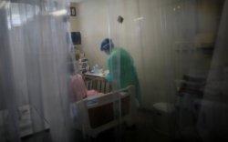 Вирусийн гаралтай шинэ халдварт өвчин Японд бүртгэгдлээ