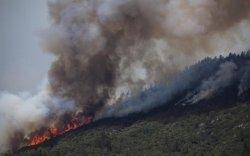 Өвөрхангайаймагт хээрийн түймэр гарч, 10 га талбай шатжээ