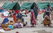 Афганистаны хүн ам өлсгөлөнд нэрвэгдэхийг НҮБ-аас анхаарууллаа