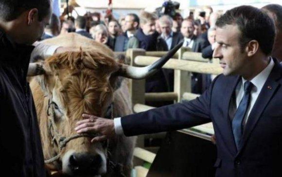 Францын Ерөнхийлөгч хөдөө аж ахуйн лоббийг эсэргүүцэв