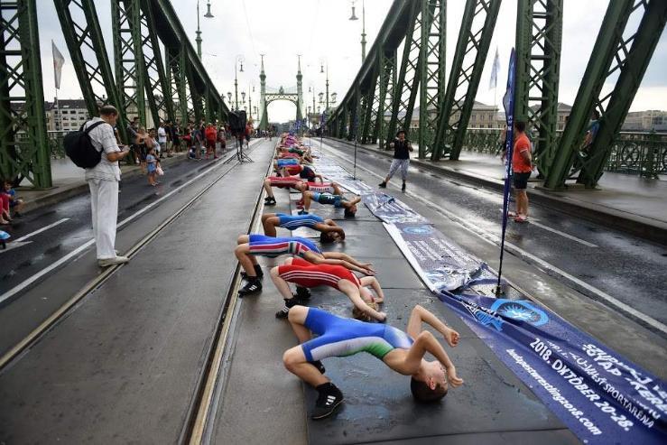 204 бөхийн гүүрэн дээрх мост