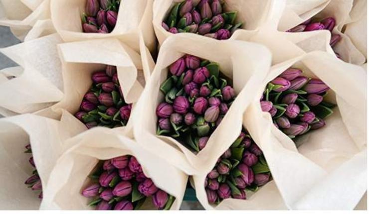 Мартын 8-ны тренд нь хатаасан цэцгийн баглаа