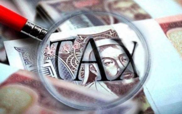 Татвар төлөгчид гахай, үнээ болохыг хориглоно