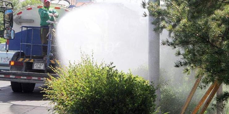 Том оврын шилмүүст моддыг угаах, хаврын цэнэг усалгааны ажил эхэллээ