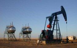 Газрын тосны үйлдвэрийн ТЭЗҮ ирэх сард бэлэн болно
