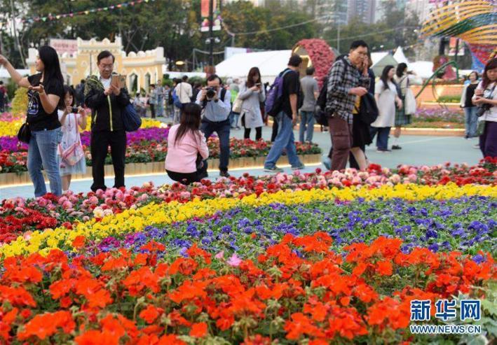 Хонконгд дэлгэрсэн 400 мянган цэцэг