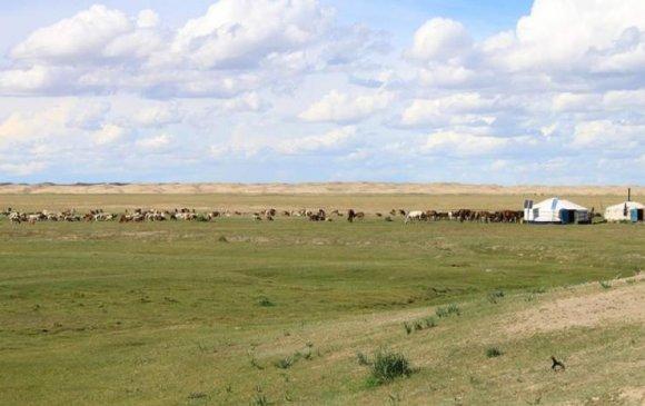 Монгол орны нийт нутгийн 40 хувь нь гандуу байна