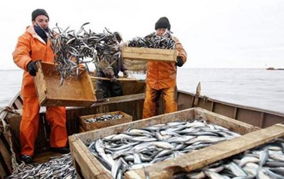 Оросын загасчид олз омог арвин байна