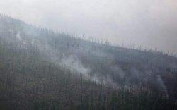 Хил давж орж ирсэн түймрийг унтраахаар ажиллаж байна